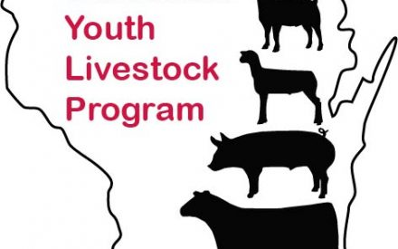 Updates on COVID-19 Safe Practices with 4-H Animal Projects