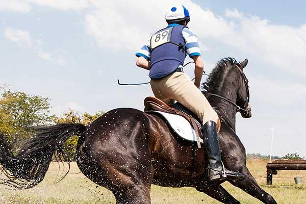 person riding horse