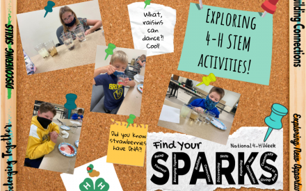 Finding and Sharing your Sparks